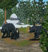 ZT-Asian Black Bear