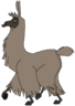 Lana the Llama