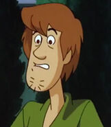Shaggy Rogers in Scooby Doo on Zombie Island 2