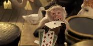 Dolittle Monkey