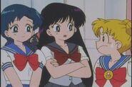 Serena, Raye, and Amy