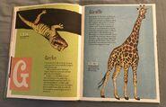 The Dictionary of Ordinary Extraordinary Animals (18)