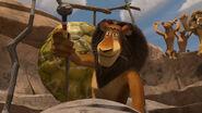 Madagascar2-disneyscreencaps.com-4530