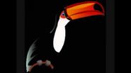 Safari Island Toucan
