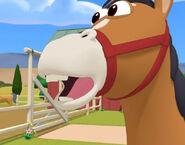 Handy Mandy Horse