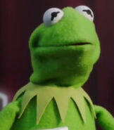 Kermit the Frog in The Muppets (2015)