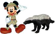 Mickey meets Honey Badger