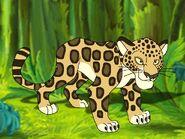 Rileys Adventures Amazon Jaguar