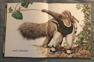 The A to Z Book of Wild Animals (2)