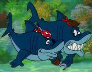 Pirate Sharks