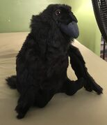 Russell the Raven