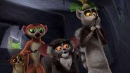 Baffled Lemurs