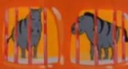 Pac-Man S01E24 Zebras