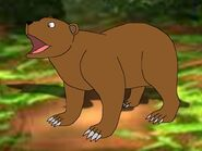Rileys Adventures Eurasian Brown Bear