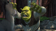 Shrek-disneyscreencaps.com-798
