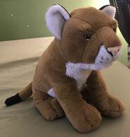 Whitney the Mountain Lion