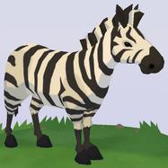 Plains Zebra WOZ