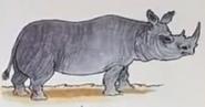 Rhinoceros usborne my first thousand words