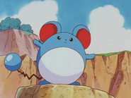 Marill (Pikachu's Vacation)