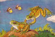 Noah's Ark Bullfrogs
