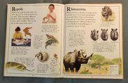 The Kingfisher First Animal Encyclopedia (59)
