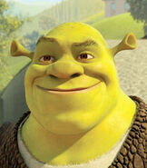 Shrek in Shrek Forever After