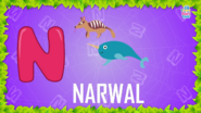 Baby Time Narwhal