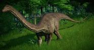 JWE Diplodocus
