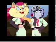 Kismet and Fat Cat