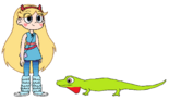 Star meets Anole