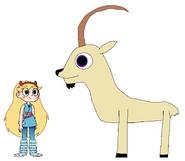 Star meets Nubian Ibex