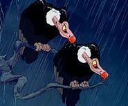 Evil Vultures