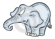 Funny-elephant-27932615
