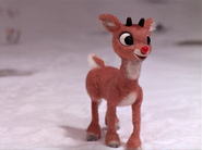 Rudolph ask to stop call his name 1