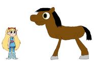 Star meets Horse