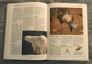 The Kingfisher Illustrated Encyclopedia of Animals (122)