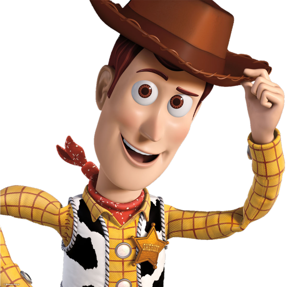 Image - Woody-toy-story2.png | The Parody Wiki | FANDOM