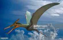 495836343-ludodactylus-sibbicki-a-pterosaur-from-the-gettyimages 5cd3