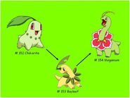 Chikorita, Bayleef and Meganium