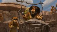 Madagascar2-disneyscreencaps.com-4542