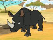 Rileys Adventures Eastern Black Rhinoceros