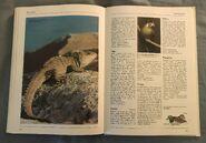 The Kingfisher Illustrated Encyclopedia of Animals (166)