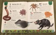Deadly Creatures Dictionary (22)