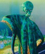 Luca Octopus