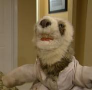 SSuperMarioLogan Sloth
