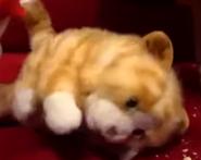 SuperMarioLogan Tabby Cat