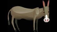 Safari Island Donkey