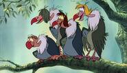Vultures jungle book