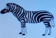 Batw-animal encyclopedia-zebra