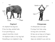 Chimps and Elephants